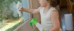 Get Rid of Dust - Cleaning Windows